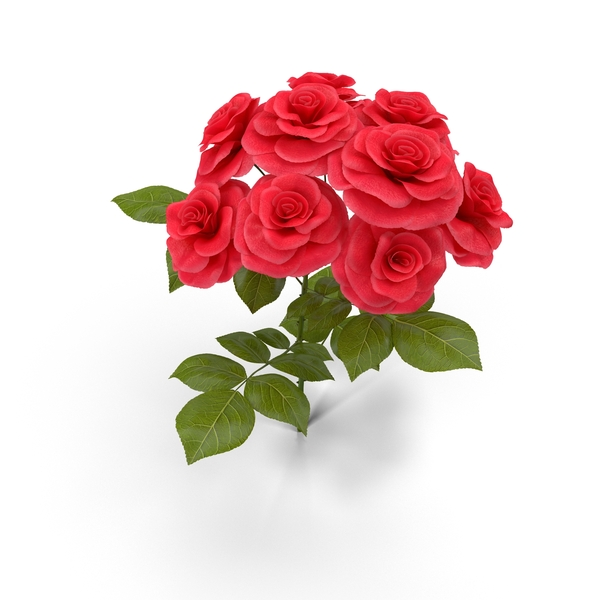Rose Bush Object