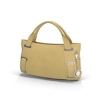 Ladies Handbag Object