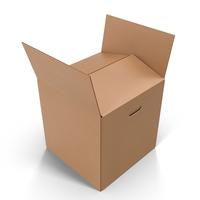 Cardboard Box Object