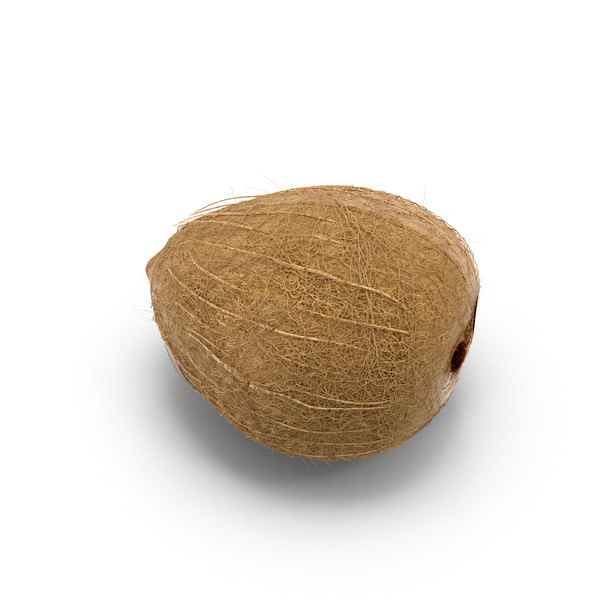 Coconut Object