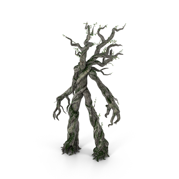 Ent Object