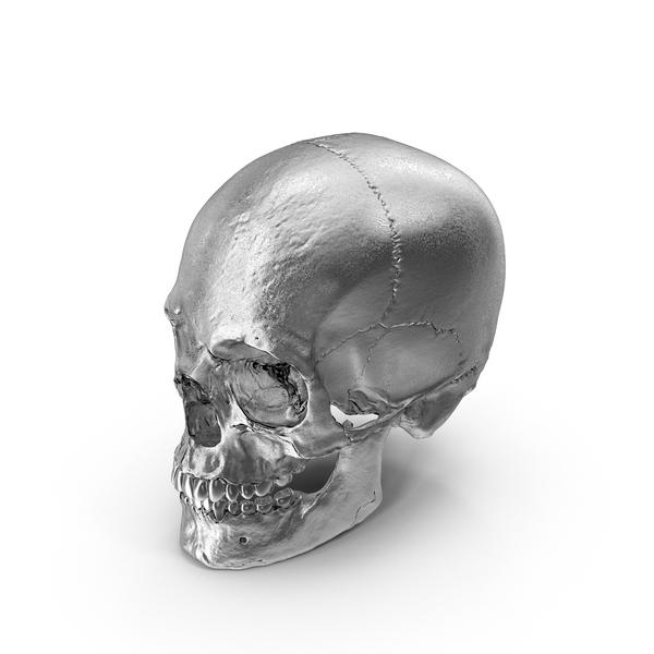 Chrome Skull Object