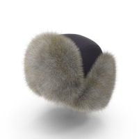 Trapper Hat With Flaps Up Object