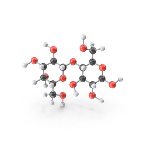 nandrolone progesterone